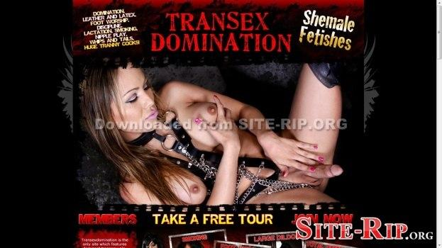 69106301_transexdomination